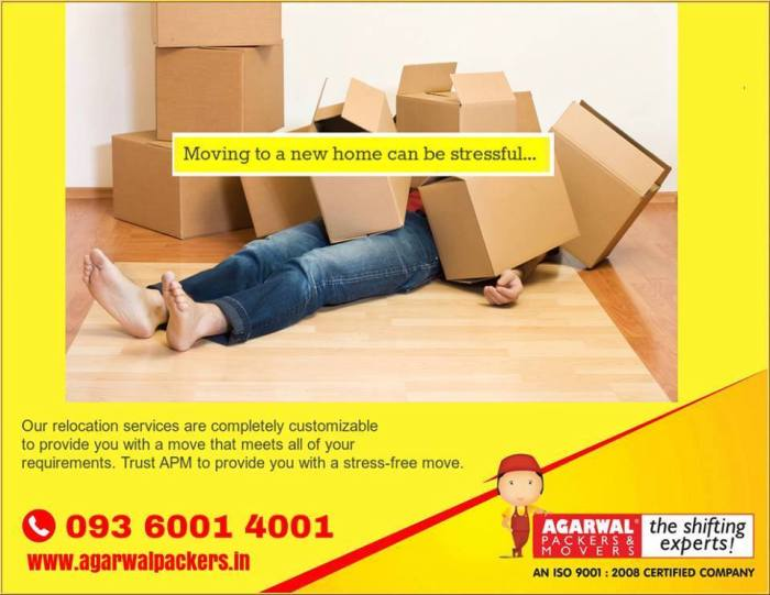 Professional Packers and Movers Services Provider in India
